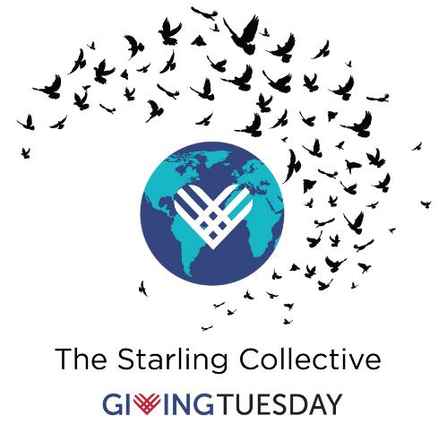 6 agosto 2020 – Starling Collective, una nuova iniziativa per diffondere in Italia la generosità promossa da AIFR – Associazione Italiana di Fundraising
